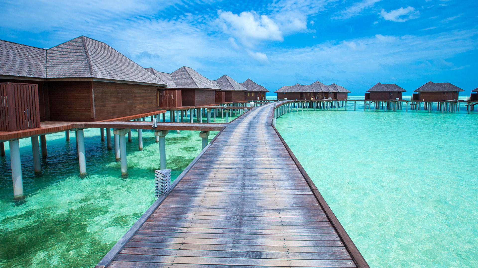 cheap airline tickets zurich to Maldives